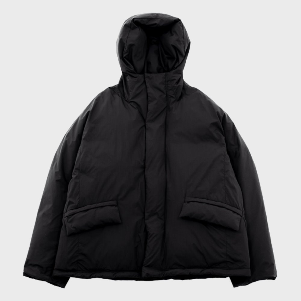 Utility Down Parka (Black)